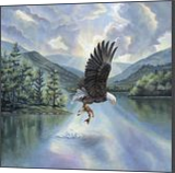 Eagle with Fish, Illustration,Paintings, Fine Art,Realism, Animals,Inspirational,Landscape,Nature,Wildlife, Acrylic, By Rebecca Suzanne Magar