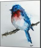 Eastern Blue Bird, Paintings, Fine Art, Animals, Watercolor, By james Allen lagasse