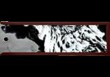 Falcon 88, Digital Art / Computer Art, Abstract, Animals, Digital, By Joshua Bindseil