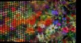 Flowers, Digital Art / Computer Art, Pop Art, Decorative, Digital, By Dmitry G. Posudin