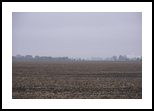 Foggy Fields, Photography, Fine Art, Nature, Photography: Photographic Print, By Rich Mengel