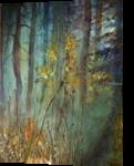 forest of shadows, Paintings, Fine Art, Fantasy,Landscape, Acrylic,Canvas, By Marta Kuźniar