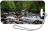 Forest Stream, Photography, Fine Art,Photorealism, Landscape,Nature, Photography: Premium Print, By Mike DeCesare