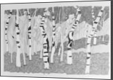 Forrest, Drawings / Sketch, Impressionism, Nature, Ink, By Deb Schmidt