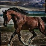 Freedom, Digital Art / Computer Art, Fine Art, Animals, Digital, By Irina Potemkina