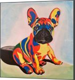 French Bulldog puppy #1, Paintings, Abstract, Animals, Acrylic, By Lucyanne Driusi Terni