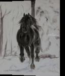 Friesan horse in winter, Paintings, Fine Art, Animals, Oil,Painting, By Claudia Luethi alias Abdelghafar