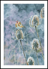 frosty thistles, Paintings, Fine Art, Animals,Botanical,Nature, Acrylic,Canvas, By Marta Kuźniar