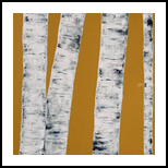 Gold Birch Trees, Paintings, Abstract, Nature, Acrylic, By Judith Cahill