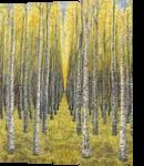 Golden Sentinels, Paintings, Abstract, Landscape,Nature, Acrylic,Canvas, By Kelsey Elizabeth VandenHoek