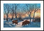 good morning, Paintings, Realism, Animals, Oil, By Cornel Moldovan