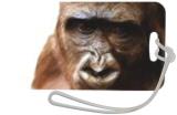 Gorilla, Digital Art / Computer Art, Realism, Animals, Digital, By Joshua Bindseil