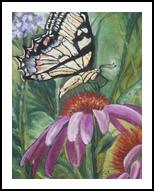 Gossamer Petals, Paintings, Fine Art, Botanical,Decorative,Floral, Pastel, By Eva Marie Hunter