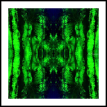 Green Forest Mandala, Graphic,Printmaking, Abstract,Futurism,Hallucinogens, 3-D,Environmental art,Spiritual, Acrylic,Digital, By Hendrik Reuss