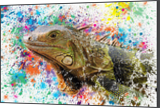 green lizard, Paintings, Impressionism, Animals, Mixed, Painting, By Angelo