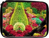 Guardian of Eden, Digital Art / Computer Art, Symbolism, Floral, Digital, By Bernard Harold Curgenven