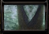 Guardian of the trees, Digital Art / Computer Art, Realism, Land Art, Digital, By Bernard Harold Curgenven