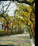 HC0258, Digital Art / Computer Art, Expressionism, Decorative,Landscape, Digital, By Heloisa do Nascimento Castro