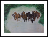 Herd of horse in canter, Paintings, Realism, Animals, Oil, By Claudia Luethi alias Abdelghafar