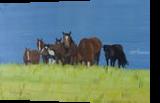 Herd of horses relaxing in peace, Paintings, Realism, Animals, Oil, By Claudia Luethi alias Abdelghafar