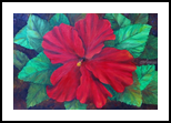 Hibiscus Flower, Paintings, Expressionism, Botanical, Oil, By Jane Adrianson