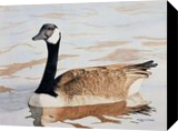 His Majesty, Paintings, Realism, Animals, Painting, By William Clark