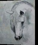 Horse 3, Paintings, Fine Art, Animals, Painting, By Hennie Cloete