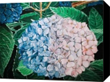 HYDRANGEA, Paintings, Modernism, Photorealism, Botanical, Floral, Acrylic, By HSIN LIN