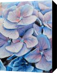 Hydrangea, Paintings, Fine Art, Botanical,Floral,Nature, Acrylic,Canvas, By Marta Kuźniar