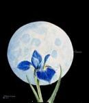 Iris Moon, Paintings, Symbolism, Botanical, Painting, By William Clark