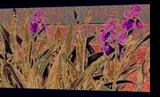 Iris Mural, Decorative Arts,Digital Art / Computer Art,Murals, Abstract,Expressionism,Fine Art,Impressionism, Botanical,Environmental art,Floral,Tropical, Digital,Photography: Stretched Canvas Print, By Diane Montana Jansson