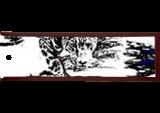 Jaguar 248, Digital Art / Computer Art, Abstract, Animals, Digital, By Joshua Bindseil