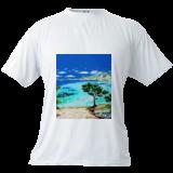 La plage de Porquerolles, Paintings, Impressionism, Figurative,Landscape,Nature,Seascape, Acrylic,Canvas, By GORFI GORFI
