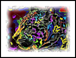 Leopard, Digital Art / Computer Art, Abstract, Animals, Digital, By Joshua Bindseil