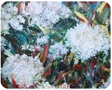 LET LIFE BE BEAUTIFUL LIKE SPRING PHOTINIA, Paintings, Abstract,Impressionism,Modernism, Avant-Garde,Botanical,Floral,Nature, Acrylic, By HSIN LIN