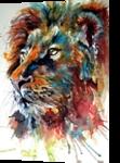 Lion, Paintings, Impressionism, Animals, Watercolor, By Kovacs Anna Brigitta