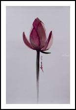 Lotus Flower watercolor painting on paper, Paintings, Fine Art,Realism, Floral,Handwriting,Still Life, Painting, By Arissara Kruewan