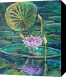 Lotus Glyptimus, Paintings, Impressionism, Window on the World, Acrylic, By Marion Grant Freeman