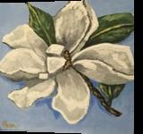 Magnolia Bloom #2, Paintings, Impressionism, Botanical,Floral, Acrylic,Canvas, By Pamela D Cauley