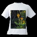Mens T-shirt (White)