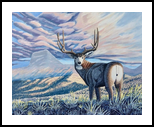 Mule Deer in the Rocky Mountains, Paintings, Realism, Animals, Acrylic, By Brian Sloan