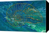 Nautilus, Paintings, Abstract, Environmental art, Acrylic, By C Jeanine Noegel