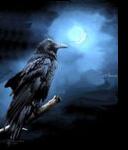 Nevermore, Digital Art / Computer Art, Realism, Animals, Digital, By William Clark