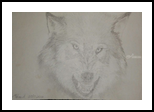 Nice Puppy, Drawings / Sketch, Minimalism, Animals,Nature, Pencil, By Matthew Scott Lannholm