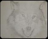 Nice Puppy, Drawings / Sketch, Minimalism, Animals,Nature, Pencil, By Matthew Scott Lannholm