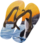 Orca, Paintings, Fine Art, Animals, Canvas, By Anita Szendrei