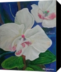 Orchidacea L, Paintings, Impressionism, Floral, Acrylic, By Marion Grant Freeman