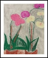 Orchids, Paintings, Impressionism, Botanical, Pastel, By MD Meiser