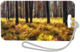 Oregon Autumn, Photography, Fine Art,Photorealism, Landscape,Nature, Photography: Premium Print, By Mike DeCesare