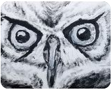 Owl Eyes, Paintings, Fine Art,Minimalism, Animals,Wildlife, Canvas,Oil,Painting, By Robert Douglas Given